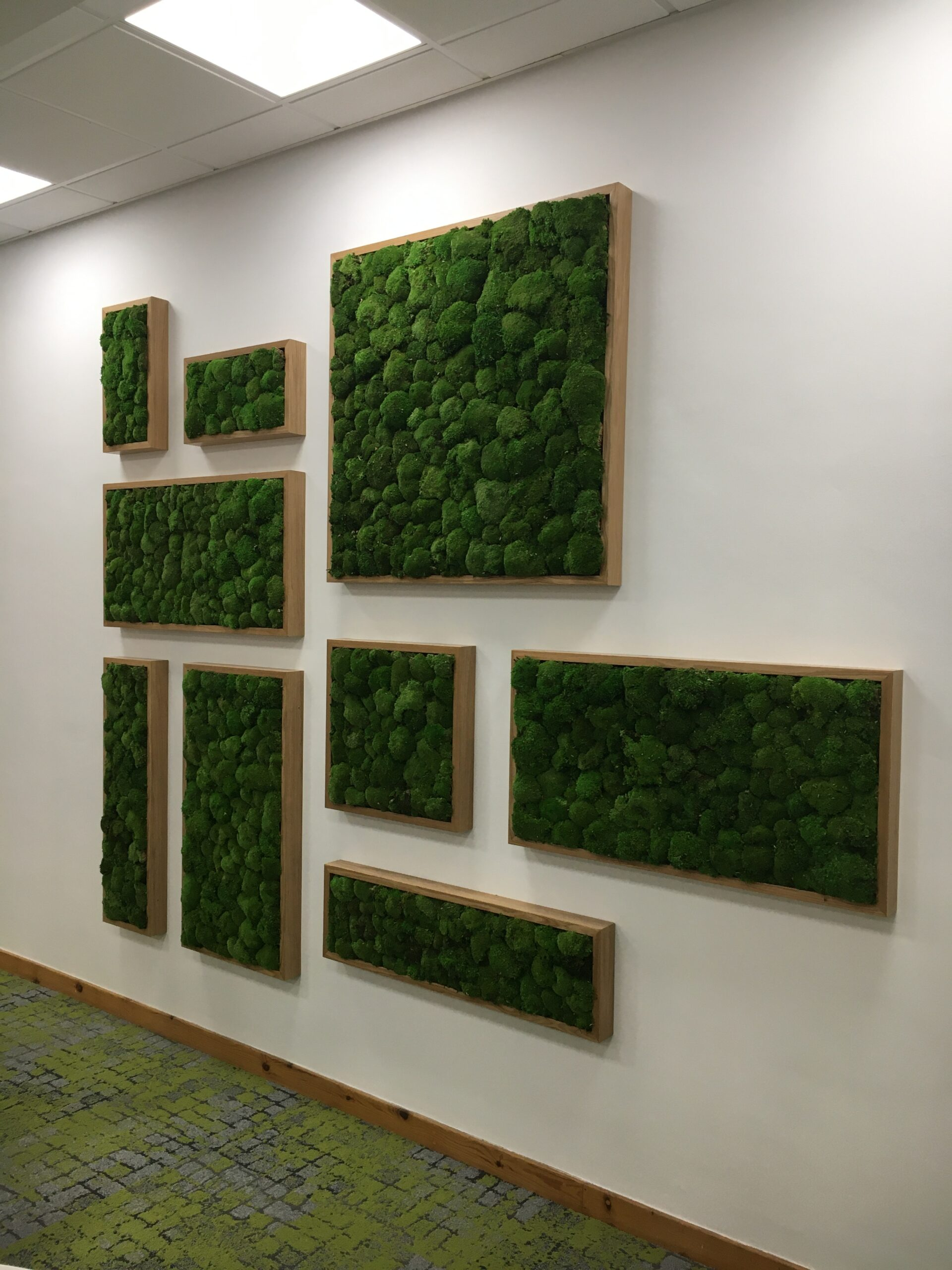 white wall with green moss inside wooden frames, hung on the wall