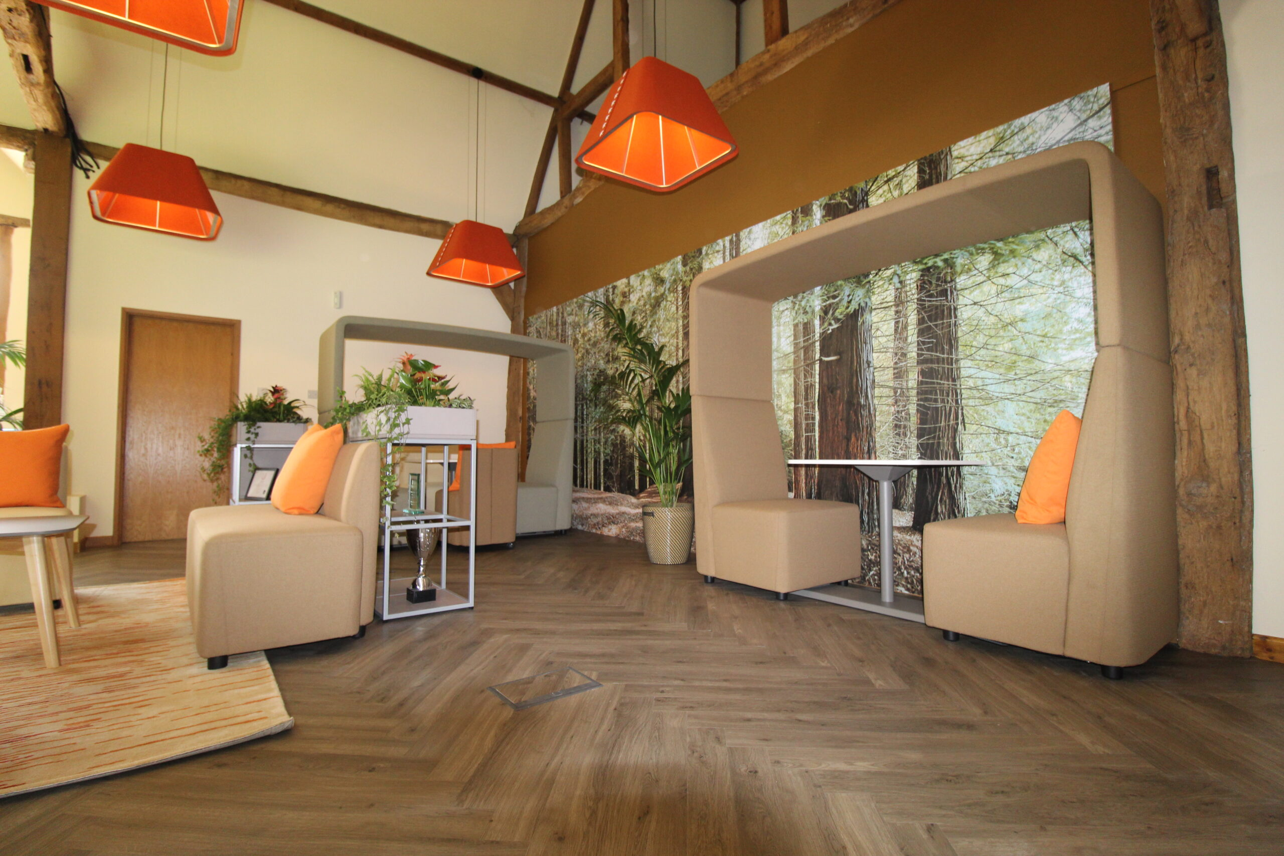 Reception area with forest wall graphic and acoustic booth